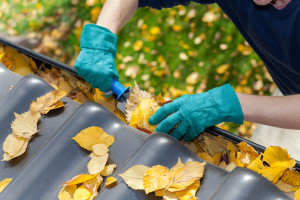 newport-beach-gutter-cleaning-service